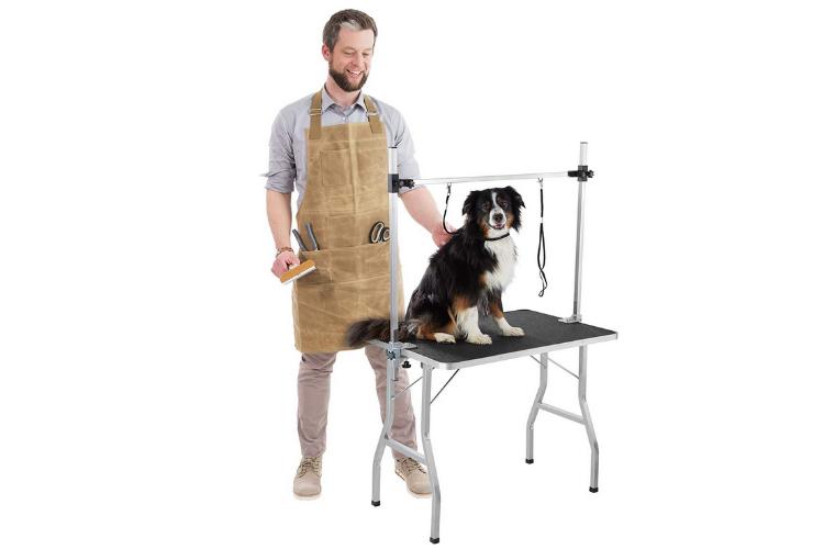Tondre un chien avec une table de toilettage